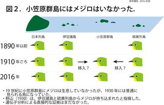 鳥学通信図2.png