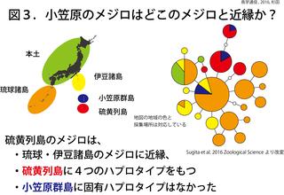 鳥学通信図3.png