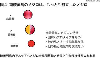 鳥学通信図4杉田.png